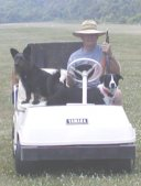 Muffie & Ace were always ready to ride along in the golf cart.