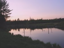 Sunset over Mcrae Pond on the HQ Loop Trail.