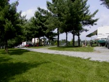The RV park is located in one of the seed production groves.