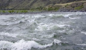 This is a view of one of the 182 rapids that the boat tour traveled through.