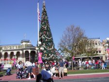 At Christmas, the parks are all decorated for the occasion. This tree was at the entry of Magic Kingdom.