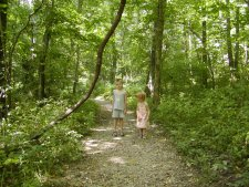 Our grandchildren walk in the Kentucky woods.